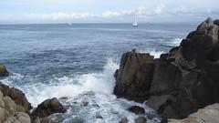 IMG_6153 (cheryl's pix) Tags: california pacificgrove pacificgroveca