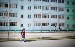 1704_DPRK -1033.jpg (The French Travel Photographer) Tags: dprk reportage countryside 8citystreetlife coréedunord flickrcomsebmar streetphoto citystreetlife campagne northkorea ©sébmar instagramsebas nature