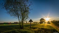 Sunrise over Dreieich (Codex IV) Tags: aufderhub nikond5300 sigma100200 sonnenaufgang sunrise sonnig sunny dreieich frue spring
