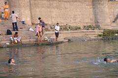 Varanasi, bathing and swimming in the Ganges (4) (walterkolkma) Tags: varanasi india ganges ganga swimming bathing streetphotography hinduism nikond5500