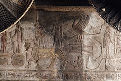 Mythical Creatures on the Ceiling at Esna (Chris Irie) Tags: esna temple egypt ceiling relief sphinx horus thoth snake