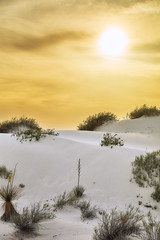 White Sands Counterpoint (Palmer Images) Tags: vertical scenics outdoors landscape fullframe zen simplicity solitude tranquility nopeople traveldestinations clouds dry sky art beauty travel nature desert dunes unitedstates 1nationalparks whitesandsnationalmonument newmexico spring afternoon daytime evening pm sunset