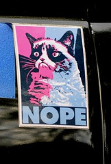 NOPE (pjpink) Tags: nope grumpycat sticker northside rva richmond virginia april 2017 spring pjpink