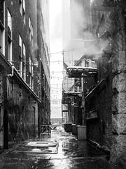 the alley (Web-Betty) Tags: bnw blackandwhite denver colorado alley urban city 16thstreetmall