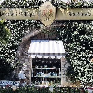 Dicas de Viagem- descubra uma perfumaria com os aromas de Capri! www.personalstylistbh.com.br   www.carolinedemolin.com.br  #moda #trend #fashion #trend #tendencias #estilo #style #personalstylist #personalstylistbh #consultoriadeimagem #consultoriadeimag