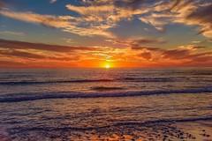 foregone conclusion (Keegan L) Tags: nikon d810 california sandiego beachy sand pacificocean surf swell