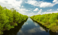 Canal (Ramon Quaedvlieg Photo) Tags: canal netherlands emmen bargercompascuum blue green trees nature sky clouds outdoor turf landscape water aqua reflections