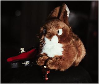 Il Maestro Coniglio