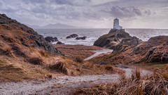 The island.... (Einir Wyn Leigh) Tags: seascape contrast ocean sea rocks detail mountains natural nature coast sky light home wales cymru wildlife path lighthouse beauty lovers island anglesey orange grass shadows tranquility special walking beach outside