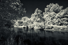 Down by the river (citrusjig) Tags: pentax wisconsin kx infrared irconverted fullspectrum sigma1020mmf456 bw090redfilter blackandwhite toned