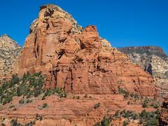 P3140148.jpg (Alan Gore) Tags: hiking westerners arizona steamboatrock nature