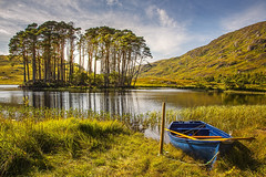 scottish highlands (jim2852) Tags: scotland scottish landscape scotch pines island hills mountain blue sky white clouds trees rowing boat fishing grass sport reflections