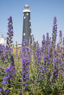 Dungeness old lighthouse 03 jun 17