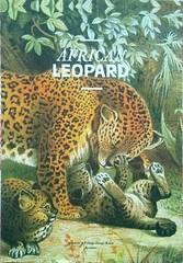 African leopard (blueilgu) Tags: 20170119 africanleopard animal