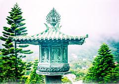 Incense Burner On The Steps Of Tian Tan Temple, Hong Kong (Peter Greenway) Tags: buddah lantauisland tiantan trees taintan hongkong ngongping religious incenseburner bigbuddah firtrees temple