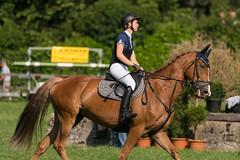 A9902947_s (AndiP66) Tags: springen langenthal pfingstspringen bern 2017 juni june 3juni2017 pferd horse schweiz switzerland kantonbern cantonofbern concours wettbewerb horsejumping springreiten pferdespringen equestrian sports pferdesport sport sony alpha sonyalpha 99markii 99ii 99m2 a99ii ilca99m2 slta99ii sony70400mm f456 sony70400mmf456gssmii sal70400g2 amount andreaspeters