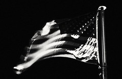 (Alvin Harp) Tags: portland oregon americanflag monochrome blackandwhite bw october 2016 sonyilce7rm2 fe24240mm alvinharp