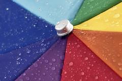 Wet and diagonal (WilliamND4) Tags: flickrfriday diagonal colorful colors wet umbrella macro tokina100mmf28atxprod nikon d810
