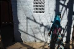 Shadow.  Jodhpur (Claire Pismont) Tags: asia asie inde india indian pismont clairepismont colorful couleur color colour woman blue travel travelphotography streetshot street shadow light lifeinindia