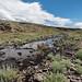 Big Antelope Creek, Upper West Little Owyhee WSA