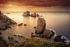 A magic world (Anto Camacho) Tags: landscape seascape rocks sunset clouds bigstopper flowers longexposure liencres spain cantabricsea ocean