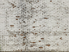 Central Unit - White Peeling Bricks (Mabry Campbell) Tags: 2017 centralunit fortbendcounty h5d50c hasselblad mabrycampbell sugarland texas usa background bricks decay decaying historic image old photo photograph prison texture wall white f80 may may252017 20170525campbellb0001417 80mm ¹⁄₈₀₀sec 100 hc80