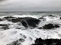 Thors Well in Cape Perpetua (TrailMob.com) Tags: siuslawnationalforest capeperpetua oregon oregoncoast hikingtrail hiking camping oregoncoastscenery pacificocean pacific backpacking outdoors outdoorsrecreation outside optoutside trailmob exploreoregon disoveroregon green nature naturephotography thorswell