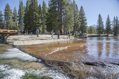 Hiking by the Tuolumne River (Yosemite Conservancy) Tags: group guide highcountry hiking landscape granite river trees outdooradventure summer tuolumneriver