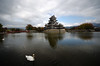 (..Serendipity..) Tags: japan matsumoto castle matsumotojō matsumotocastle 松本城 nagano donjon nationaltreasure crowcastle swan water hirajiro keep