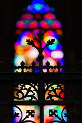 Bokeh (M Lang) Tags: kirche gitter architektur churchwindow church fenster impressiv gotisch vienna gebäude window wien österreich at