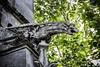 Gargouille Arras (SMB-PHOTOGRAPHIC) Tags: gargoyle gargouille gargouilles gargoyles démon daemon dark gothique architecture church eglise cathédrale cathedral death