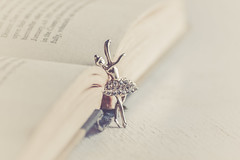 D.A.N.C.E (Ayeshadows) Tags: dance ballerina trinket book dream