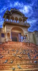 Incredible India series (Nick Kenrick..) Tags: india temple hindu