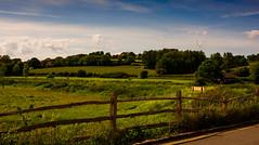 Landscape in England. (ost_jean) Tags: landscape england nature paysage landschap engeland ostjean nikon d5200 tamron sp af 1750mm f28 xr di ii vc ld