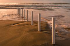 DSC_9492 (Daniel Matt .) Tags: sunset sunsetcolours sunsets irishlandscape landscape landscapephotography ireland natgeo nature greennature beach sunsetsandsunrise aroundtheworld