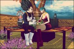 03 Vegeta y Bulma (Roudoudou Hirons) Tags: secondlife vegeta bulma dbz virtualworld mundosvirtuales