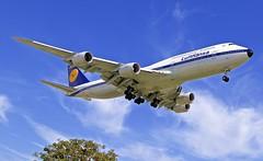 "LAX/KLAX: Lufthansa ""Retro"" Boeing B747-8 D-ABYT (Roland C.) Tags: lax klax lufthansa lh boeing b747 b748 b7478 dabyt california usa losangeles losangelesinternational"