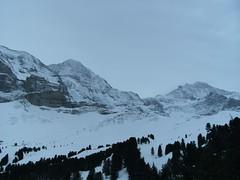 ... /\ ... /\ ... (project:2501) Tags: wengen jungfrauregion suisse switzerland snow ski travel theviewfromhere clouds sky bluelight blue bluebleu bleu inthemountains mountains mountain rock pinetrees alpinefauna eiger3970m mönch4107m jungfrau4158m