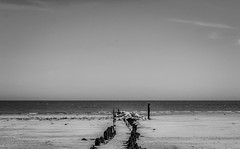 GROYNES AND THE SEA (coffee robbie..PROTECTED BY PIXSY) Tags: groynes youghal eire eochill europe nikond5100 nikon sea kitlens cork coast ireland blackandwhite bw silverefexpro2