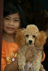 pretty girl with her golden poodle (the foreign photographer - ฝรั่งถ่) Tags: pretty girl child golden poodle khlong thanon portraits bangkhen bangkok thailand canon kiss