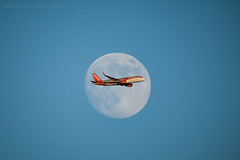 Fly Me To The Moon (ianrwmccracken) Tags: easyjet 600mm sigma aeroplane flying moon boeing passenger commercial scotland a320214 nikon satellite telephoto blue aircraft sky d750
