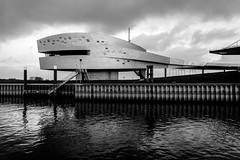 _DSC7691-2 (durr-architect) Tags: spiegelwaal ruimte room river waal nijmegen netherlands high water flood island bridge nevengeul