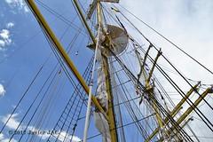 El Velero Rumano Mircea es un velero del tipo barca de tres mástile  (63) (javier_cx9aaw) Tags: elero rumano mircea