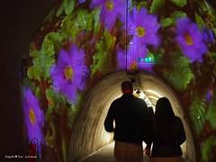underground-tunnel-floraart_28