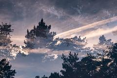 NAGU (KL!) Tags: nauvo nagu turku finland 2017 summer doubleexposure tripleexposure