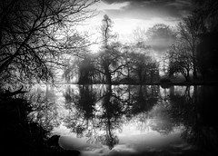 In The Lake - Syon Gardens by Simon & His Camera (Simon & His Camera) Tags: reflection water lake trees gardens simonandhiscamera syon syonhousepark syonpark syonhouse symmetry fog middlesex mist bw blackandwhite brentford beauty composition enchanted isleworth london landscape monochrome nature outdoor shade sky vignette woods hazy tree