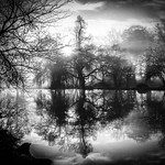 In The Lake - Syon Gardens by Simon & His Camera thumbnail