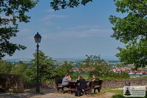 Ausblick von Burg Neuleiningen