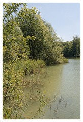 Le Lac Bleu - Forêt de Carnelle (DavidB1977) Tags: france iledefrance valdoise forêtdecarnelle saintmartindutertre nikon d610 nikkor ais lacbleu