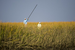 Mike & Omar (Lawson Builder) Tags: lowcountry fishing flats flyfishing redfish fly reddrum low country skiff charleston hellsbay a7ii photography zeiss35 marsh zeisslens zeiss sony sonyalpha